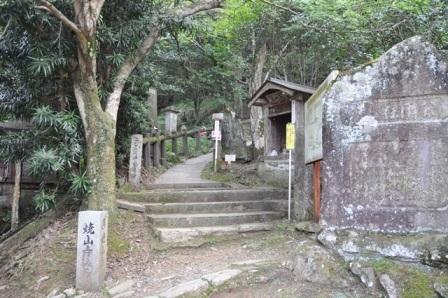 11番藤井寺 (12).JPG