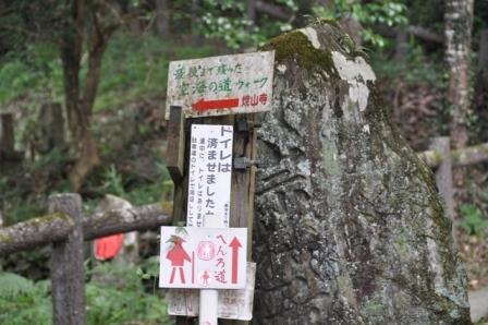 11番藤井寺 (16).JPG