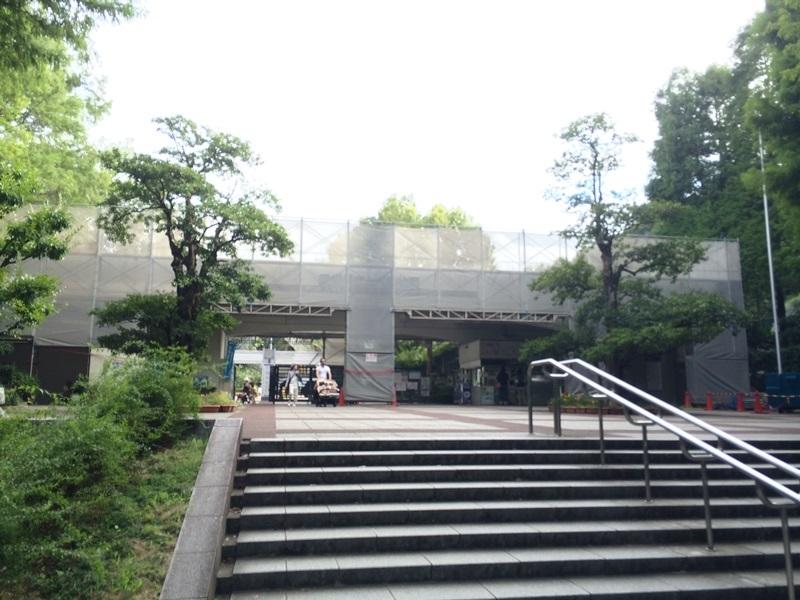 とべ動物園 (4).JPG