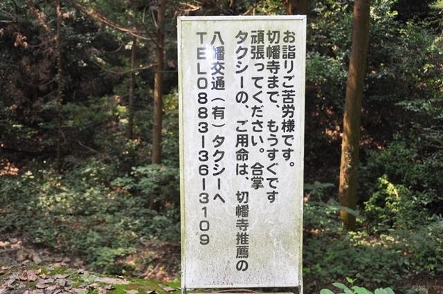 10番切幡寺 (36).JPG