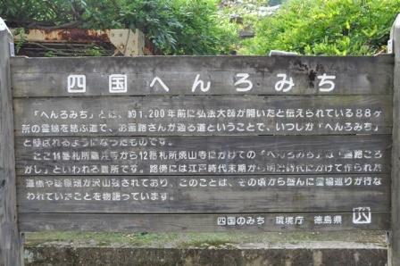 11番藤井寺 (3).JPG