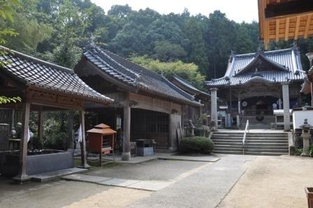11番藤井寺 (5).JPG